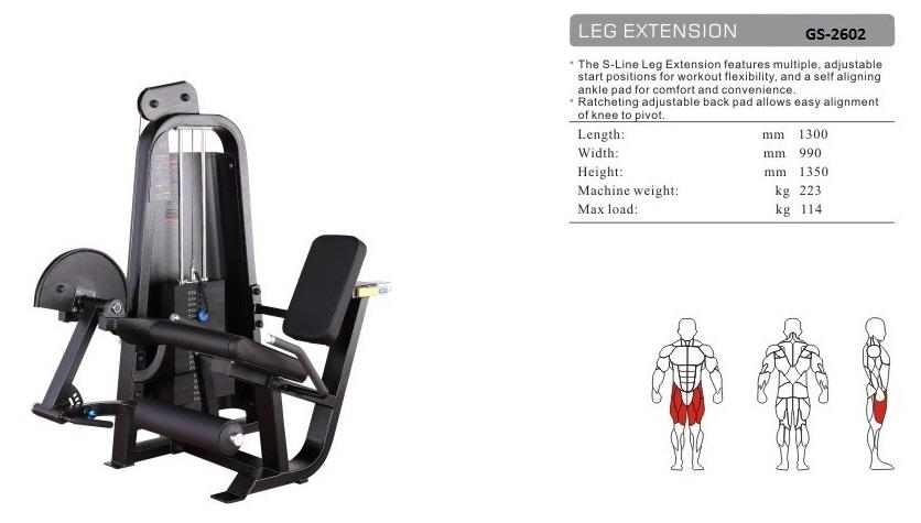 Leg Extension GS-2602 - 130cm×99cm×135cm 223kg